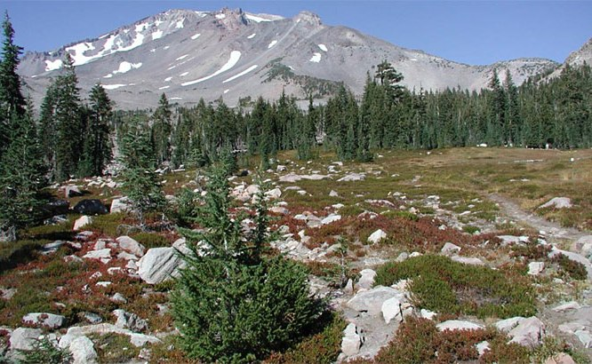 Mt. Shasta in Summer