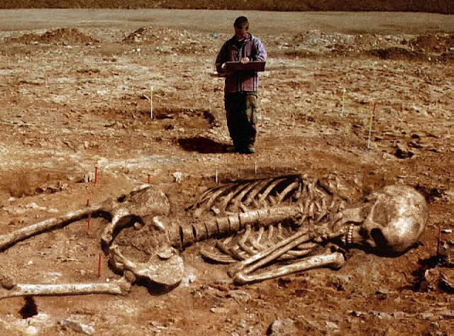 Man standing next to archaeological dig with giant human skeleton