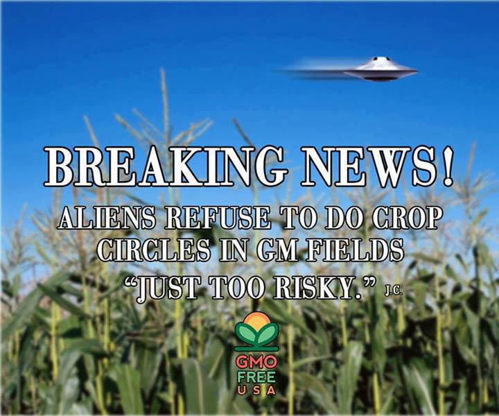 Aliens Refuse To Do Crop Circles in GM Fields - Too Risky