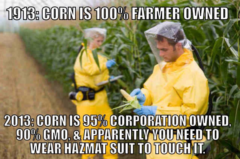 Corn used to come from family farms.  Now 95% comes from corporate farms and you need a HazMat suit to touch it.