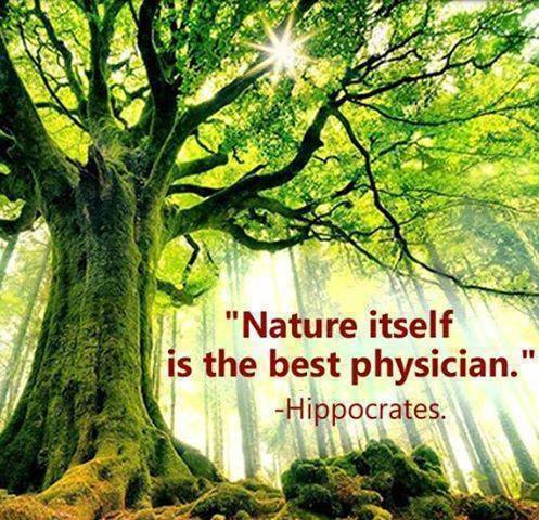 Hippocrates - Nature is the best physician