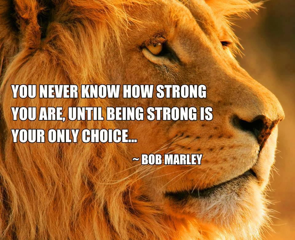 (Lion) You never know how strong you are until being strong is your only choice.  ~ Bob Marley