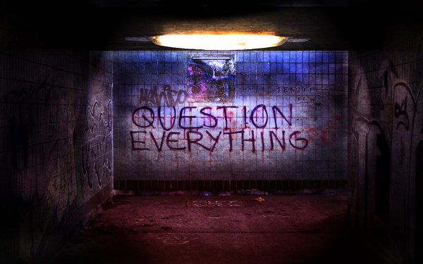 Question_Everything_by_Victawr