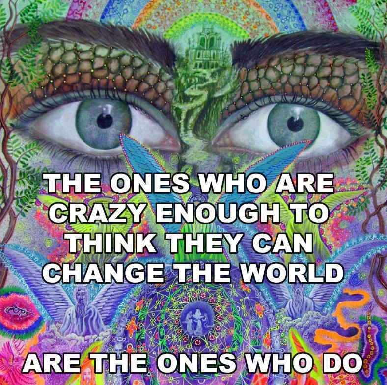 The Ones Crazy Enough to Think They Can Change the World Are the Ones Who Do