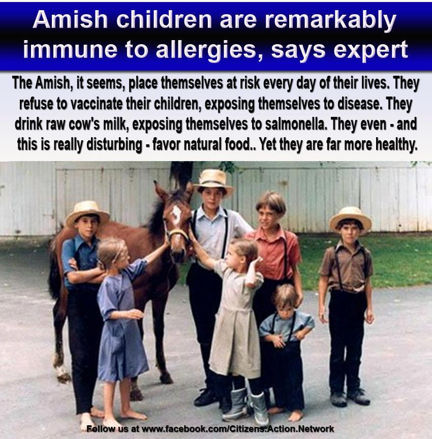 Amish Children Remarkable Healthy - No Vaccines
