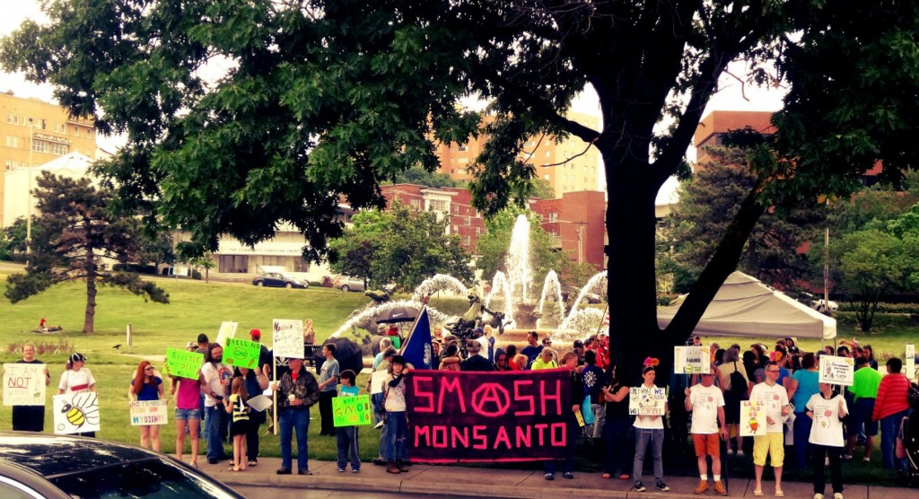 March Against Monsanto 2014 - Smash Monsanto