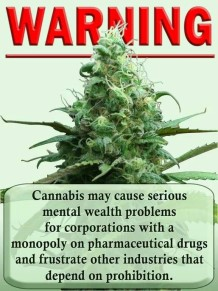 Cannabis Causes Mental Wealth Problems for Competing Industries