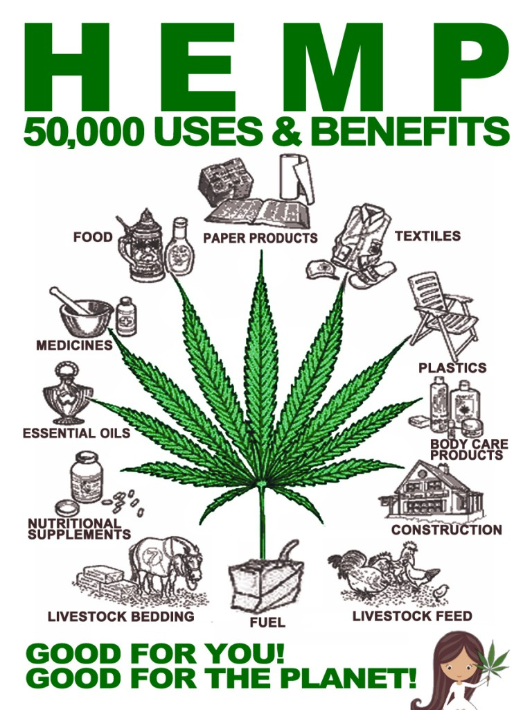 Hemp-50000-Uses-and-Benefits-768x1024.jpg