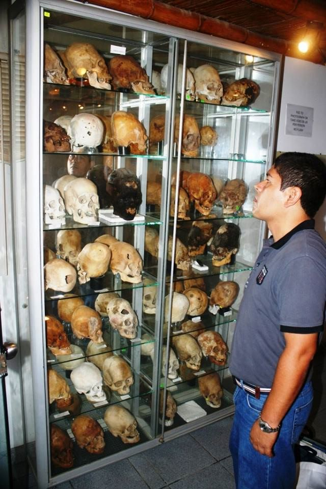 Forensic Dentist Looks Into Case of Over 30 Paracas Skulls